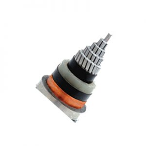 MEDIUM VOLTAGE SINGLE CORE XLPE INSULATED POWER CABLE